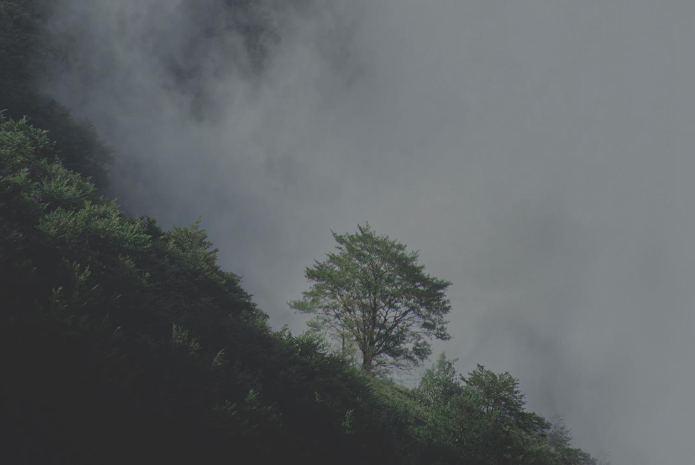 SEGEN WIRD KOMMEN – GOTT HAT DICH NICHT VERGESSEN