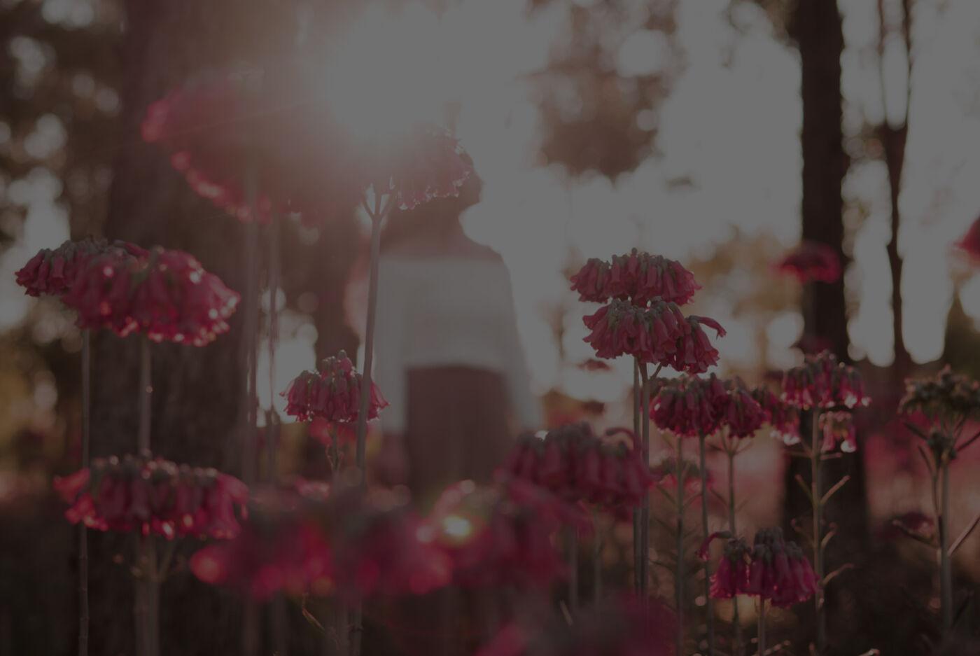 UNTERWEGS MIT GOTT – STAUNT JESUS ÜBER DEINEN GLAUBEN?